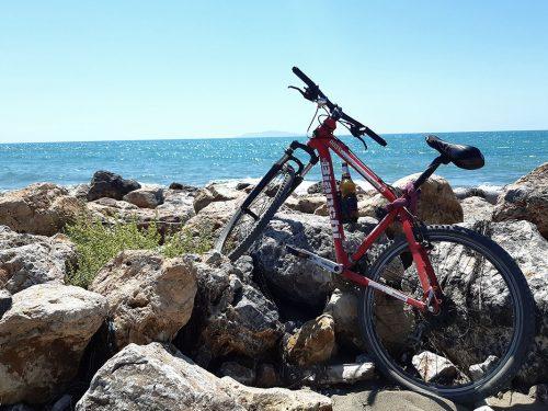 L'economia della bicicletta in Italia