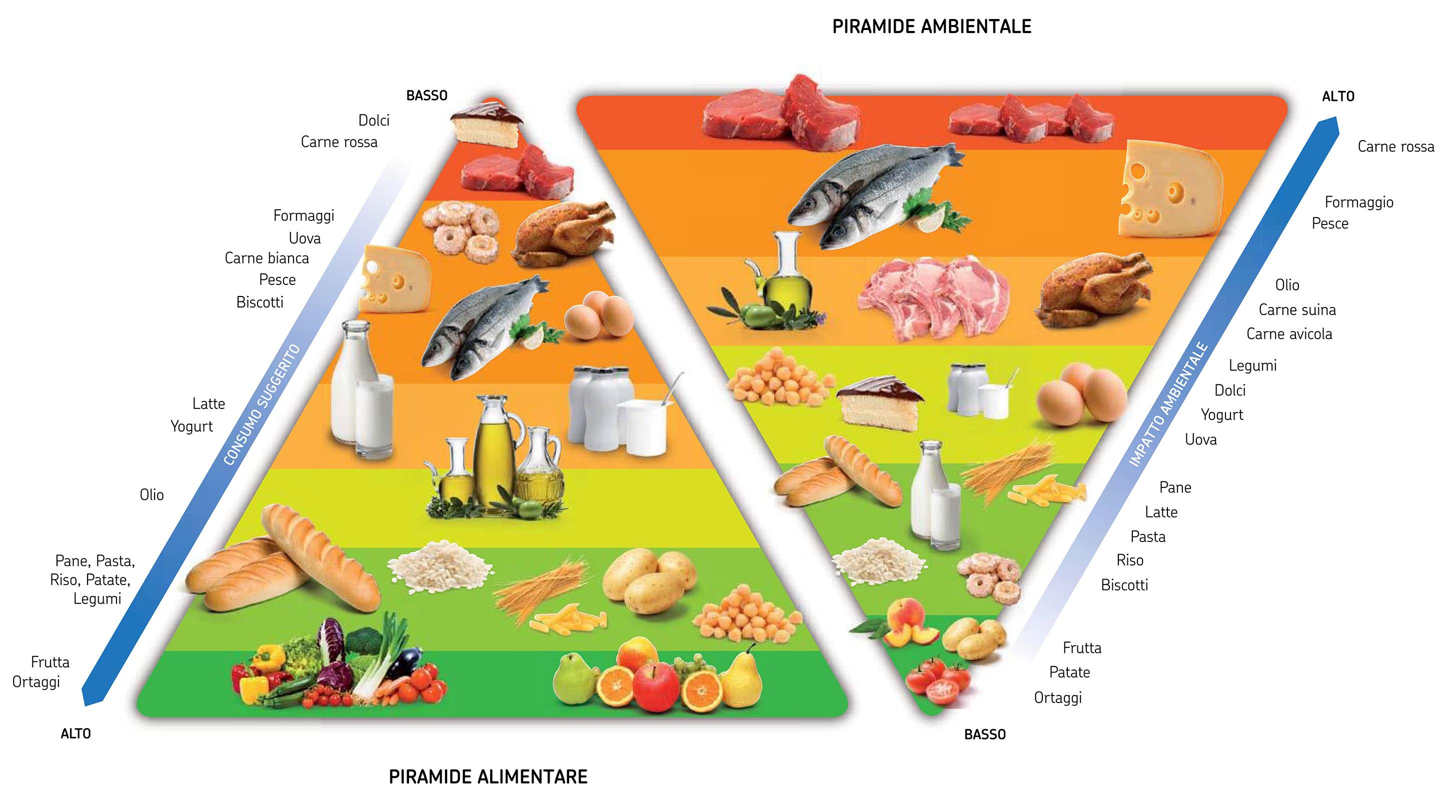 lca sostenibilità piramide fao alimenti