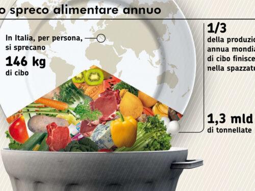 LCA agroalimentare: sprechi e impatto ambientale della nostra alimentazione