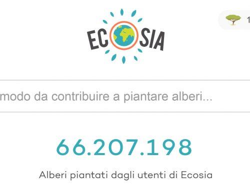 Ecosia: il motore di ricerca green
