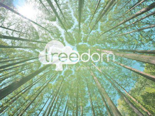 Treedom: la startup che pianta gli alberi, neutralizzando le emissioni di CO2