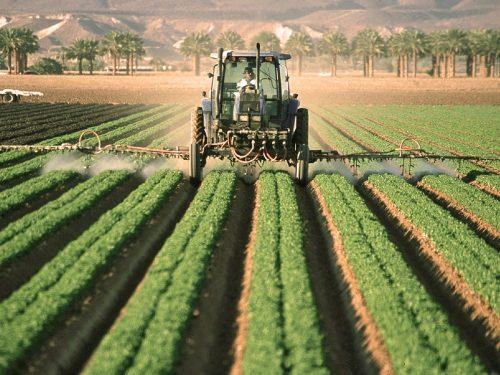Agricoltura e pesticidi: rischi e pericoli per la salute