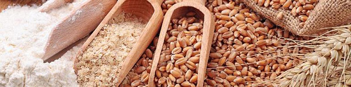 cereali farine frumento